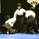 corso di aikido a monza